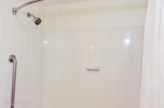 Comfort Suites Hummelstown-Hershey : Bathroom
