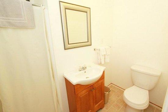 Golden Lion Motel: Bathroom