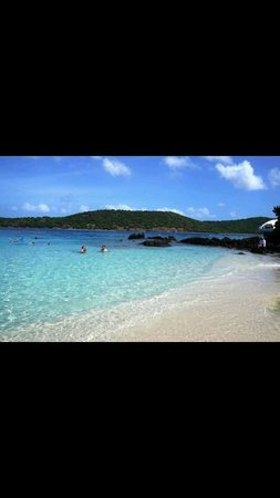 Coki Point Beach : Tranquil waters at Coki Beach