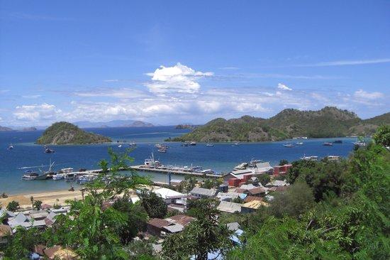 Komodo Resort & Diving Club: Harbor at Labuan Bajo