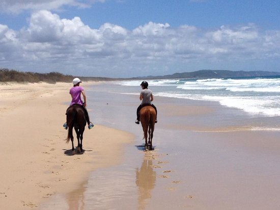 Equathon Horse Riding Tours - Day Tours: On the way back