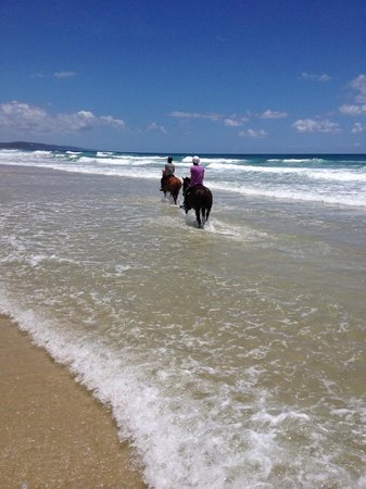 Equathon Horse Riding Tours - Day Tours: Riding in the water