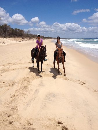 Equathon Horse Riding Tours - Day Tours : Lovely horses