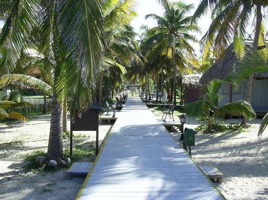 Hotel Roc Arenas Doradas: New Boardwalk