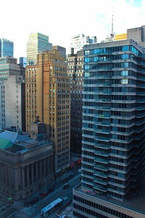 Hilton Garden Inn New York/West 35th Street: View from our hotel room