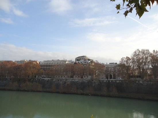 Fiume Tevere: The trees were having their own show during our visit.
