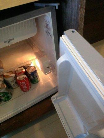 Secret Cliff Resort: broken refrigerator door