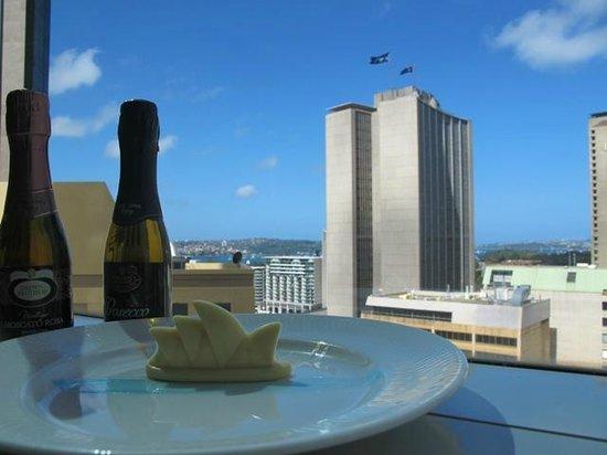 Sydney Harbour Marriott Hotel at Circular Quay: NYE 2013 token
