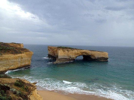 Wildlife Tours Australia: Great Ocean Road scenery