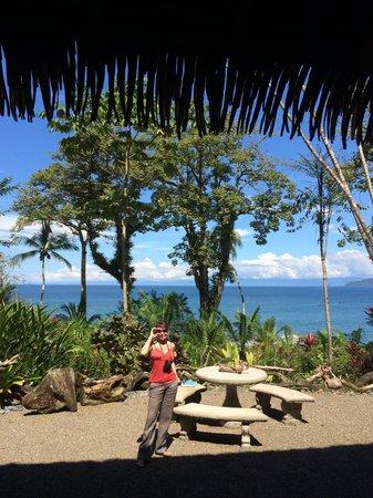 """Copa de Arbol Beach and Rainforest Resort : the """"lobby"""""""