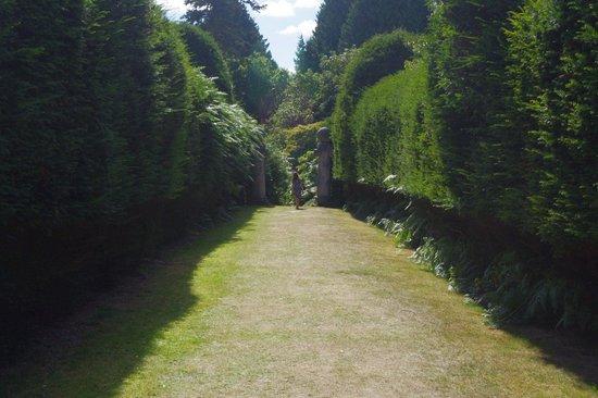 Best Western Chilworth Manor Hotel: A walk in the garden