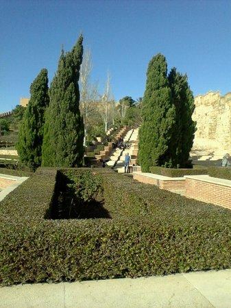 Conjunto Monumental de La Alcazaba: Part of the gardens created over ancient living quarters