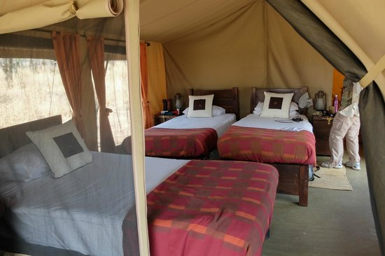 Dunia Camp, Asilia Africa : our tent