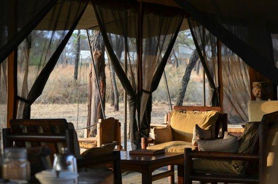 Dunia Camp, Asilia Africa: lounging area