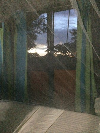 Mahoora Tented Safari Camp - Udawalawe: View of sun rise from our tent