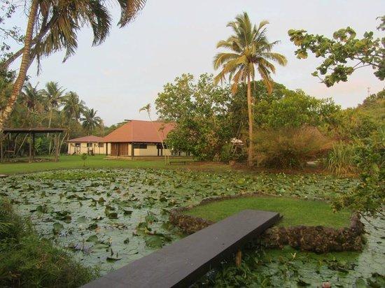Gecko's Resort: Hotelanlage