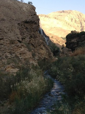 Ma'In Hot Springs: les wadis