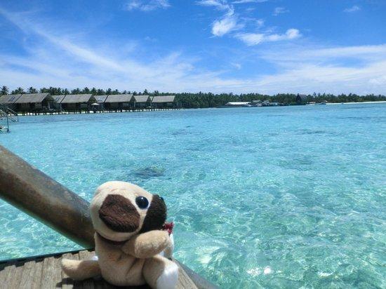 Shangri-La's Villingili Resort and Spa Maldives: more and more
