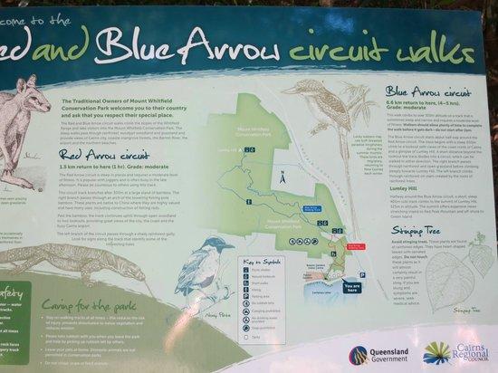 Red Arrow Walk: Blue Arrow