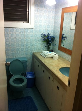 Casa Joaquin Bed and Breakfast: Purple room bathroom