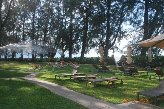 Lone Pine Hotel : Garden near the beach