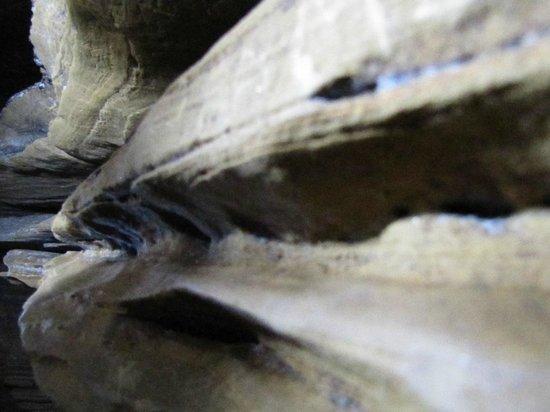 Gupteswar Gupha: Patterned stone alongside the cave