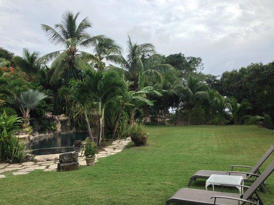 Sweetfield Manor Boutique Hotel: Garden
