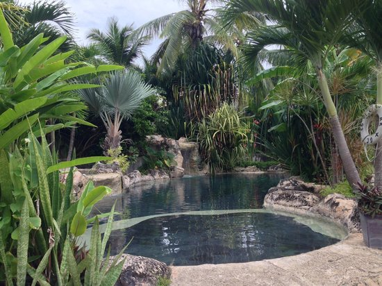 Sweetfield Manor Boutique Hotel : The pool in the garden