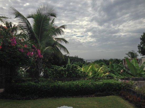 Sweetfield Manor Boutique Hotel : Garden