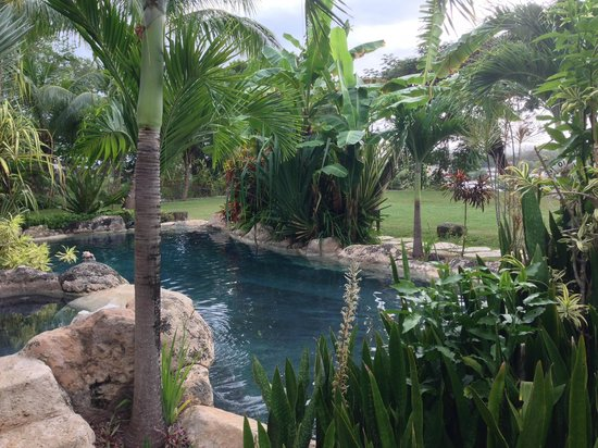 Sweetfield Manor Boutique Hotel : Pool