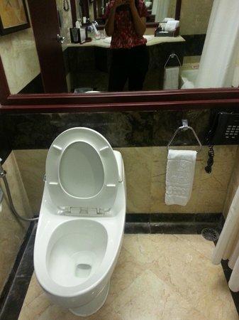 Hotel Borobudur Jakarta : bathroom