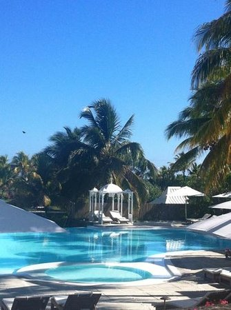 Paradise Cove Boutique Hotel: The rather gorgeous pool ...