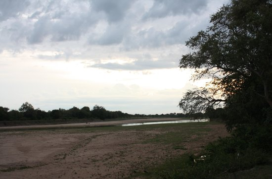 Croc Valley Camp : View from the edge of the lodge's property.