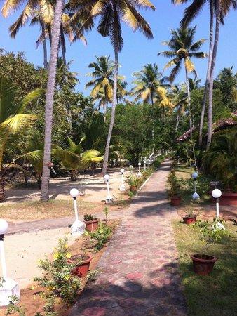 Marari Fishermen Village Beach Resort: Villas