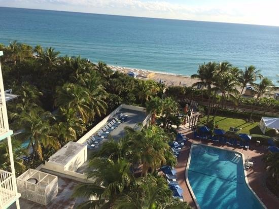 Four Points by Sheraton Miami Beach : area das piscinas