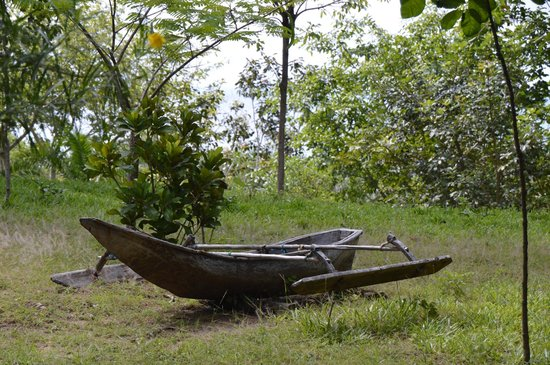 Shamba Kilole Eco Lodge: A small boat of the kind typically used by the locals.