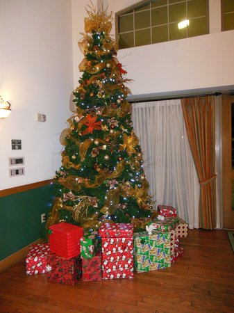 Country Inn & Suites By Carlson, Scottsdale: Christmas tree in the lobby...