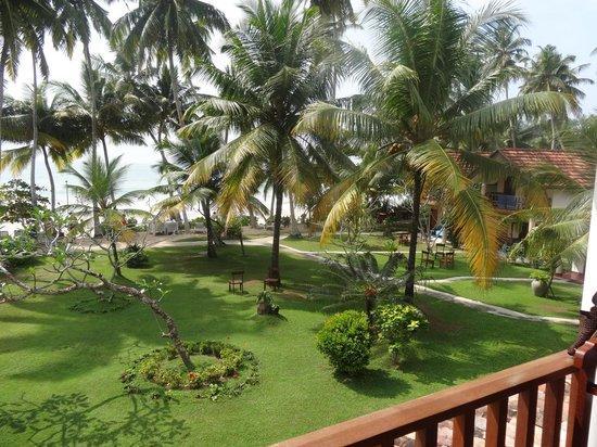 Paradise Beach Club: View across gardens to Ocean from balcony