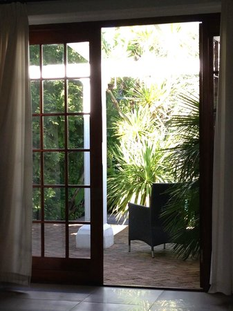 Villa Exner: Looking out to shady pool area with palms and stunning birds