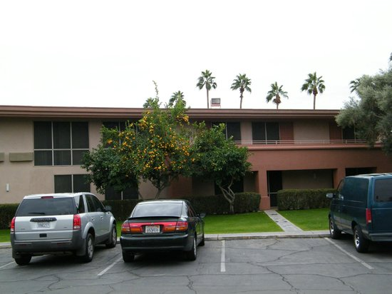Best Western Date Tree Hotel : exterior