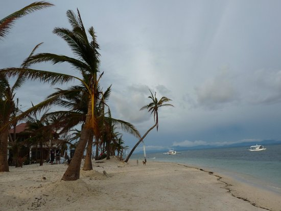 Malapascua Exotic Island Dive & Beach Resort: Hotel Strand