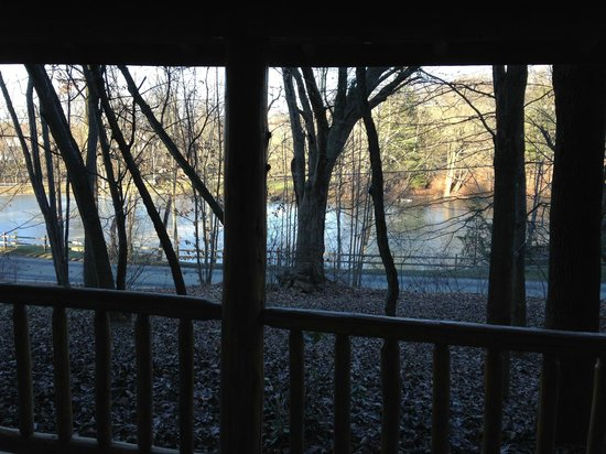 Coblentz Country Cabins-Amish Country Lodging : view of pond across road from our porch