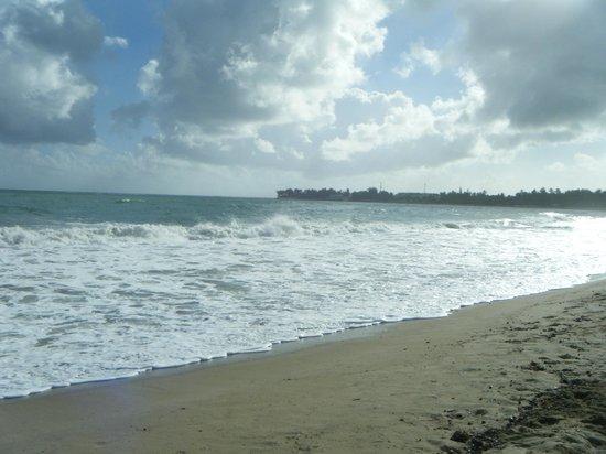 Viva Wyndham Tangerine : La mer