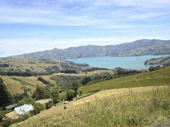 Akaroa Farm Tours: Views from Akaroa