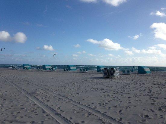 Fort Lauderdale Marriott Pompano Beach Resort & Spa : Fabulous beach