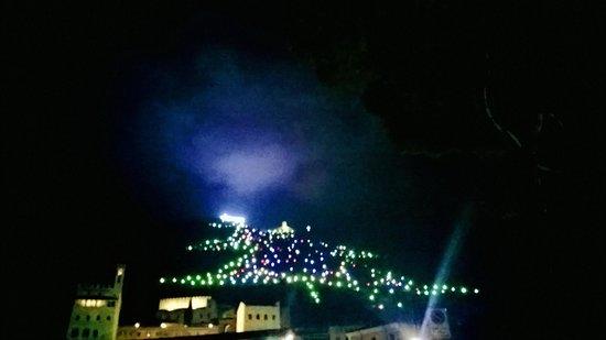 Park Hotel Ai Cappuccini: Sulla sinistra lasciandoti l'Hotel alle spalle : l'albero di Natale più grande del mondo!