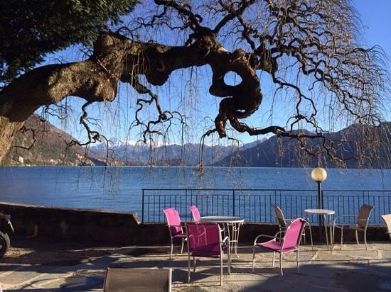 Villa Belvedere: terrase devant le lac