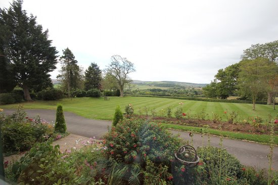 Cedar House: View from the breakfast room