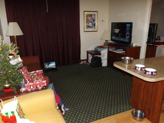 Homewood Suites by Hilton Rochester / Henrietta : kitchenette and living room