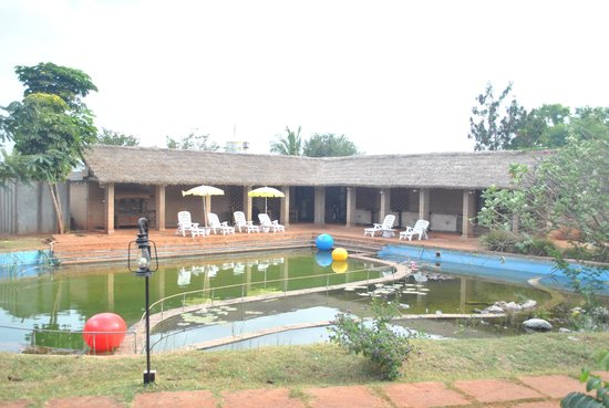 Our Native Village: The pool